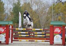 equitación